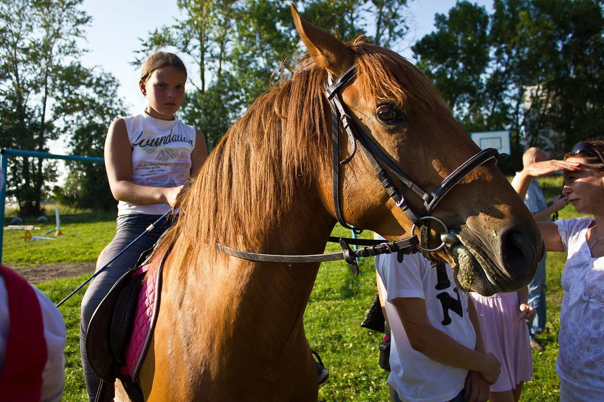 cоревнования по конному спорту: